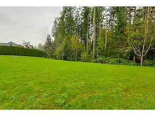 Photo 3: 26165 127TH AV in Maple Ridge: Websters Corners House for sale : MLS®# V1092167