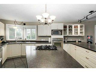 Photo 11: 26165 127TH AV in Maple Ridge: Websters Corners House for sale : MLS®# V1092167