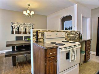 Photo 9: 51 Glenlawn Avenue in Winnipeg: Elm Park Residential for sale (South East Winnipeg)  : MLS®# 1523128