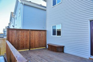 Photo 25: 6952 22 Ave SW in Edmonton: House for sale : MLS®# E4043126
