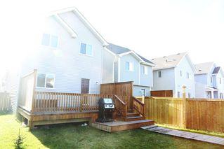 Photo 23: 6952 22 Ave SW in Edmonton: House for sale : MLS®# E4043126