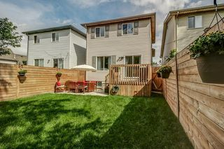 Photo 13: 84 Newlands Avenue in Hamilton: House for sale : MLS®# H4040526