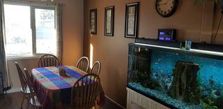 Photo 5: 3516 107 Street in Edmonton: Zone 16 House for sale : MLS®# E4181419