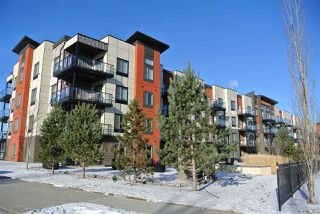 Main Photo: 418 320 AMBLESIDE Link in Edmonton: Zone 56 Condo for sale : MLS®# E4181638