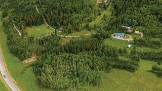 Photo 42: 74194 Highway 40 in Rural Bighorn No. 8, M.D. of: Rural Bighorn M.D. Detached for sale : MLS®# A1017139