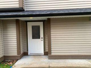 Photo 2: 3131 267A Street in Langley: Aldergrove Langley 1/2 Duplex for sale : MLS®# R2522123