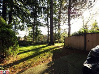 Photo 10: 31 3015 TRETHEWEY Street in Abbotsford: Abbotsford West Townhouse for sale