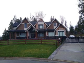 "Main Photo: 12021 265A Street in Maple Ridge: Northeast House for sale in ""WEBSTERS CORNER"" : MLS®# R2440416"