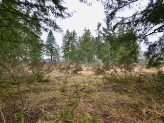 Photo 4: Lot A Ulverston Ave in CUMBERLAND: CV Cumberland Other for sale (Comox Valley)  : MLS®# 836956