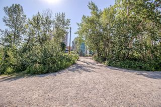 Photo 43: 1212 738 3 Avenue SW in Calgary: Eau Claire Apartment for sale : MLS®# A1009404