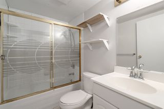 """Photo 17: 558 W 17TH Avenue in Vancouver: Cambie House for sale in """"Cambie"""" (Vancouver West)  : MLS®# R2491817"""