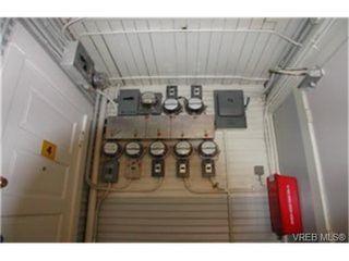 Photo 4: 166 Medana St in : Vi James Bay Multi Family for sale (Victoria)  : MLS®# 331467