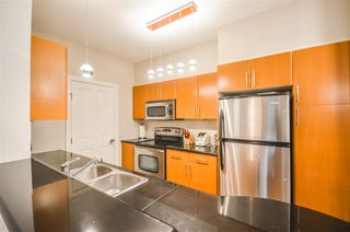 Photo 18: 203 2330 WILSON AVENUE in Port Coquitlam: Central Pt Coquitlam Condo for sale : MLS®# R2325850