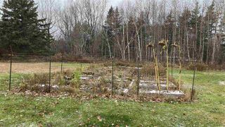 Photo 6: 12 Birch Water Drive in Big Island: 108-Rural Pictou County Residential for sale (Northern Region)  : MLS®# 202024100
