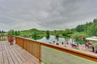 Photo 25: 6 471082 RGE RD 242 A: Rural Wetaskiwin County House for sale : MLS®# E4165804