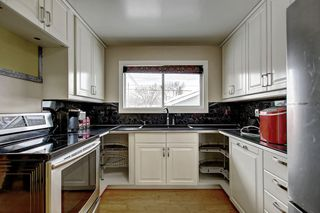 Photo 6: 10518 164 Street in Edmonton: Zone 21 House for sale : MLS®# E4184098