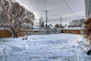 Photo 24: 10518 164 Street in Edmonton: Zone 21 House for sale : MLS®# E4184098