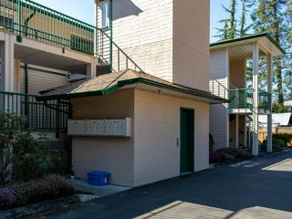 Photo 32: 14 1876 Comox Ave in COMOX: CV Comox (Town of) Condo for sale (Comox Valley)  : MLS®# 845695