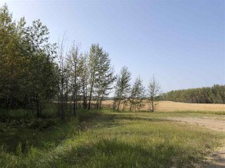 Photo 5: 0 26225 TWP Rd 511: Rural Parkland County Rural Land/Vacant Lot for sale : MLS®# E4216203
