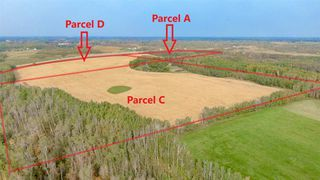 Photo 9: 0 26225 TWP Rd 511: Rural Parkland County Rural Land/Vacant Lot for sale : MLS®# E4216203