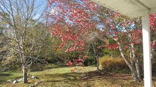 Photo 11: 6011 Shore Road in Ingomar: 407-Shelburne County Residential for sale (South Shore)  : MLS®# 202021479