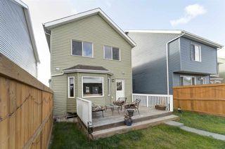 Photo 34: 6922 23 Avenue in Edmonton: Zone 53 House for sale : MLS®# E4218190