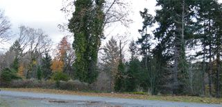 Photo 45: 4232 Johnston Rd in : PA Port Alberni House for sale (Port Alberni)  : MLS®# 859884