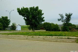 Photo 3: 19 Bosworth Street in Kerrobert: Commercial for sale : MLS®# SK838241