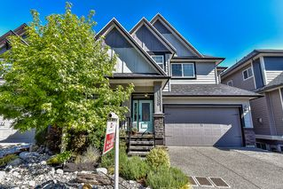 Photo 1: 21059 80A Avenue in Langley: Willoughby Heights House for sale : MLS®# R2066409