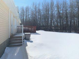 Photo 18: 10 JUTLAND Crescent: Stony Plain House for sale : MLS®# E4192365
