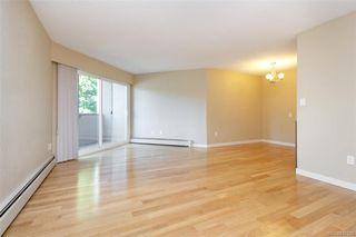 Photo 6: 207 3800 Quadra St in Saanich: SE Quadra Condo Apartment for sale (Saanich East)  : MLS®# 845125