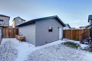 Photo 39: 316 Cimarron Vista Way: Okotoks Detached for sale : MLS®# A1048616