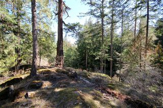 Photo 20: 5927 Jupiter Pl in : Sk East Sooke House for sale (Sooke)  : MLS®# 860704