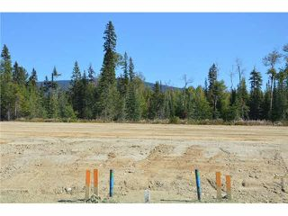 "Photo 18: LOT 6 BELL Place in Mackenzie: Mackenzie -Town Land for sale in ""BELL PLACE"" (Mackenzie (Zone 69))  : MLS®# N227298"