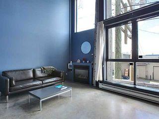 Photo 7: # 203 234 E 5TH AV in Vancouver: Mount Pleasant VE Condo for sale (Vancouver East)  : MLS®# V1112379