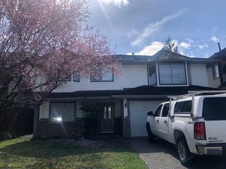 Main Photo: 20448 122B Street in Maple Ridge: Residential Attached for rent