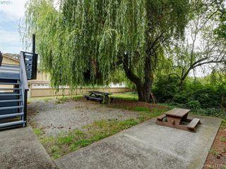 Photo 23: 3981 Cedar Hill Cross Road in VICTORIA: SE Cedar Hill Single Family Detached for sale (Saanich East)  : MLS®# 417788