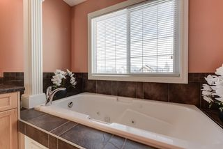Photo 27: 3075 SPENCE Wynd in Edmonton: Zone 53 House for sale : MLS®# E4198919