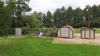 Photo 35: RR1 Falun: Rural Wetaskiwin County House for sale : MLS®# E4222158