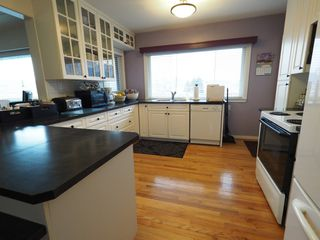 Photo 16: 1334 Dominion Crescent in Kamloops: South Kamloops House for sale : MLS®# 137783