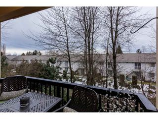 Photo 17: 226 5655 210A STREET in Langley: Salmon River Condo for sale : MLS®# R2138274