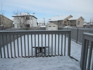 Photo 19: 16351 - 56 Street NW in Edmonton: House Duplex for rent