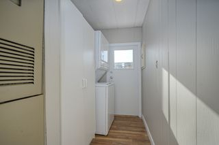 Photo 15: 46 31313 Livingstone Avenue in Abbotsford: Abbotsford West Manufactured Home for sale : MLS®# R2337850