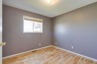 Photo 17: 133 HIDDEN SPRING Circle NW in Calgary: Hidden Valley Detached for sale : MLS®# A1025259