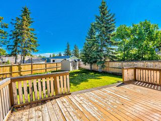 Photo 29: 341 SPRING HAVEN Court SE: Airdrie Detached for sale : MLS®# A1033328