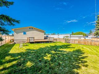 Photo 27: 341 SPRING HAVEN Court SE: Airdrie Detached for sale : MLS®# A1033328