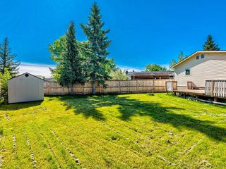 Photo 30: 341 SPRING HAVEN Court SE: Airdrie Detached for sale : MLS®# A1033328