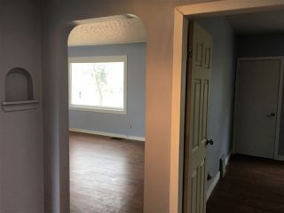 Photo 14: 12407 93 Street in Edmonton: Zone 05 House for sale : MLS®# E4219734