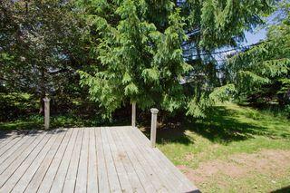 Photo 24: 10 Devon: Sackville House for sale : MLS®# M13427