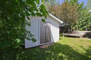 Photo 27: 10 Devon: Sackville House for sale : MLS®# M13427